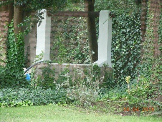 Hostal La merced: parque