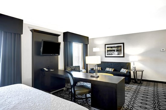 Hampton Inn & Suites Columbia / South: King Studio Suite