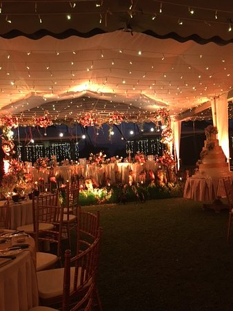 Wedding decors picture of paradise road the villa bentota bentota paradise road the villa bentota wedding decors junglespirit Image collections