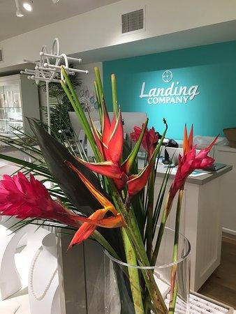 Landing Company - Sarasota