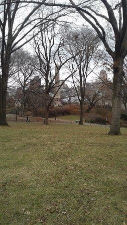central park vista de los edificios de new york se aprecian muy hermosos
