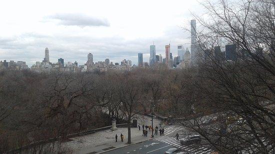 vista del central park desde el museo de historia natural hermosa vista central park vista de los edificios de new york