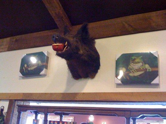 Linden, VA: Boar!