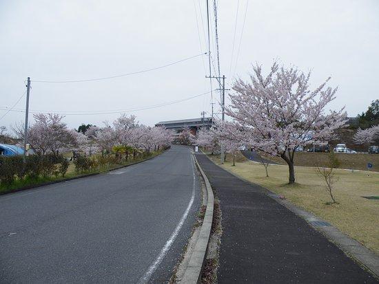 Kushihara Onsen Sasayuri no Yu