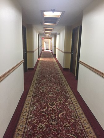 Quality Inn Morton: Hallway to the room