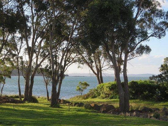 Taranna, Australia: Back yard - view from Winter (Blue) Cottage; very peaceful!