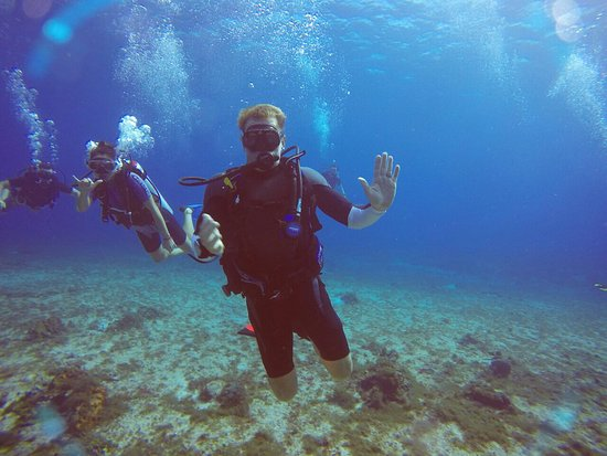 Sea Robin Cozumel