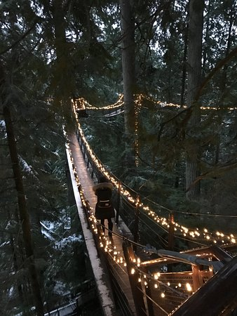 North Vancouver, Canadá: Sky bridge