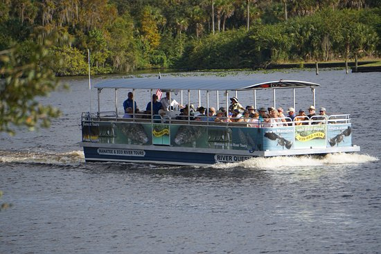 Manatee & Eco River Tours