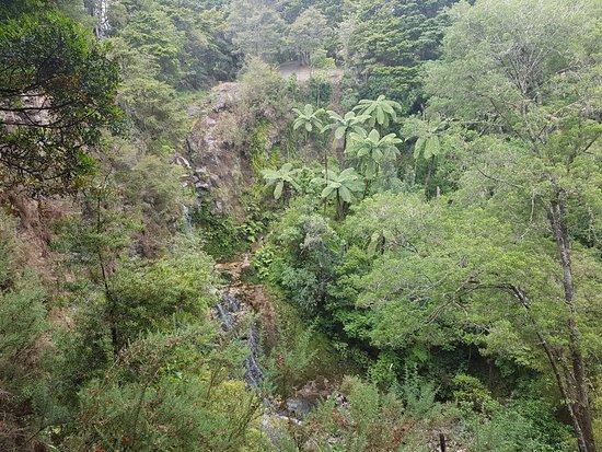Whangarei, New Zealand: Waterfall