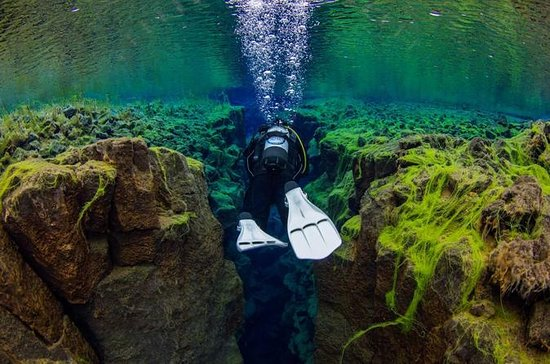 Diving in Silfra Fissure - Day Trip ...