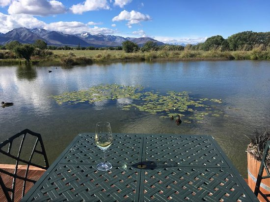 The view from the private deck of our spacious room at Matuka Lodge, just outside of Twizel.