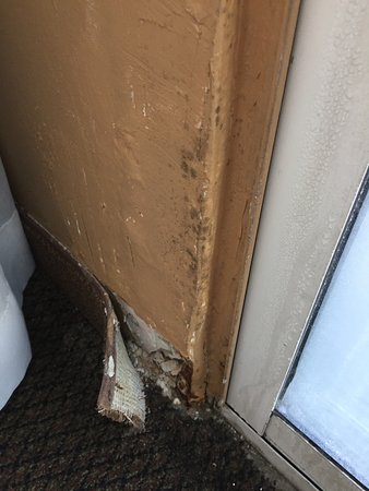 Milpitas, CA: Mold and wet rot on wall due to moisture from condensation. Notice decayed drywall