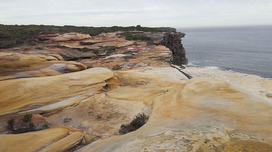 Royal National Park, Australia: photo4.jpg