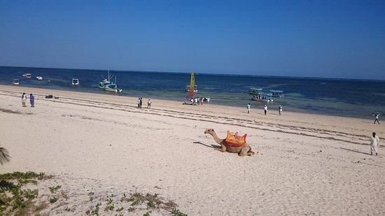 Zdjęcie Travellers Beach Hotel & Club