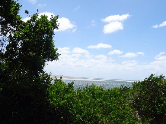 Stanley, Avustralya: Beach view