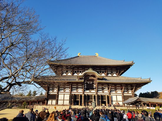 Kinki, Japon : Todaiji temple from my sight