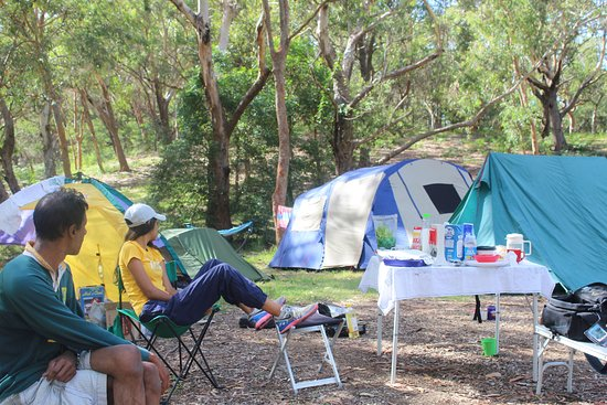 Camping in port stephens