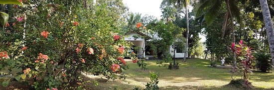 Westelijke Provincie, Sri Lanka: Front Garden at Aranga-La family holiday bungalow in Homagama, Sri Lanka