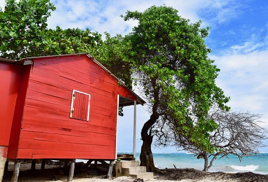 Carlito's Sunrise Paradise: Beach front cabins!
