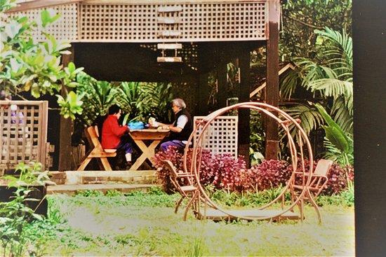Paksong, Laos: Breakfast