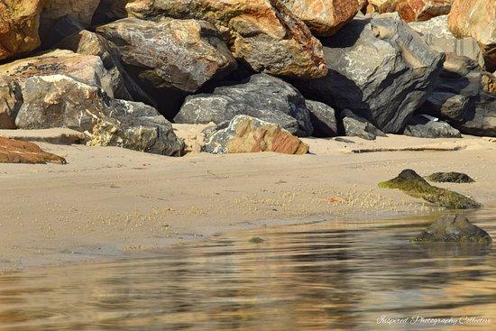 West Lakes, Australia: Beaches and Rocks