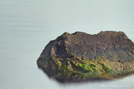 West Lakes, Australia: Exposed rocks
