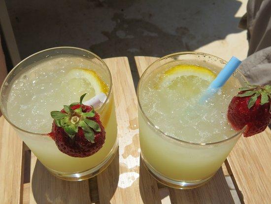 Finca Ca's Sant: Zitronenlimonade frisch ab Baum, ein Genuss!