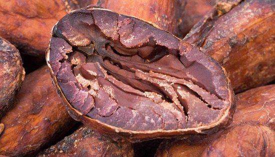 https://media-cdn.tripadvisor.com/media/photo-s/0e/13/fb/ea/open-cocoa-bean.jpg