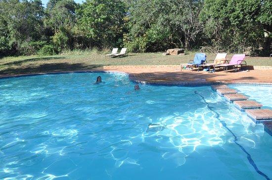 Заповедник Хлухлуве, Южная Африка: Je kunt gebruik maken van het zwembad wat bij hiltop lodge hoort.
