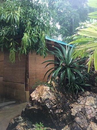 Ananda Wellness Resort: photo5.jpg
