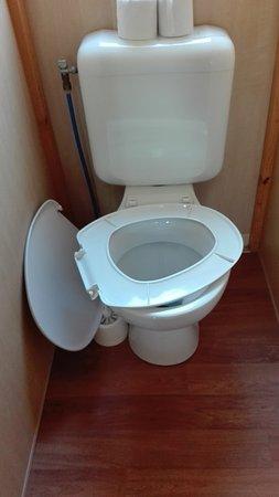 La Ferte-Imbault, Γαλλία: Toilette cassé.