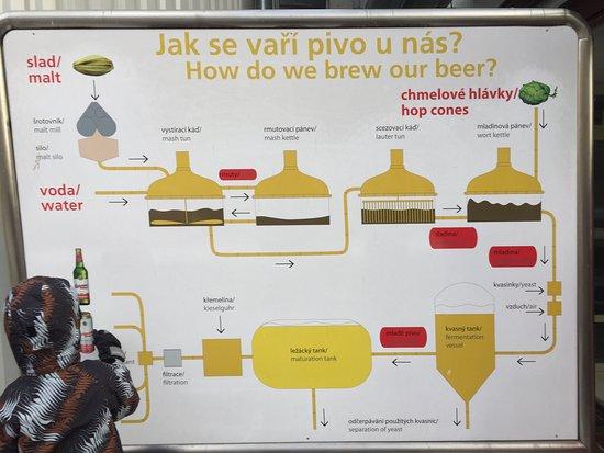 Ceske Budejovice, Repubblica Ceca: Budweiser Brewery (Budejovicky Budvar)