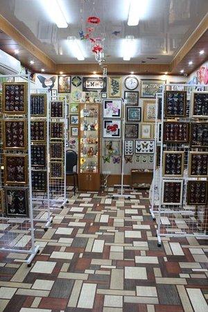 Kasimov, Russia: Музей-квартира бабочек и стрекоз в Касимове