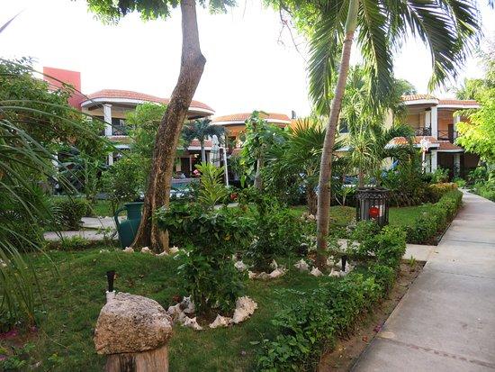 Cabañas Maria del Mar: Beautiful grounds near pool
