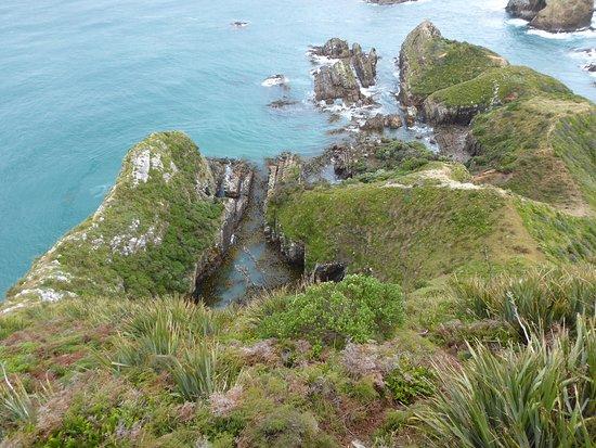 Invercargill, Nouvelle-Zélande : photo5.jpg