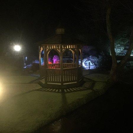 Edingworth, UK: photo5.jpg
