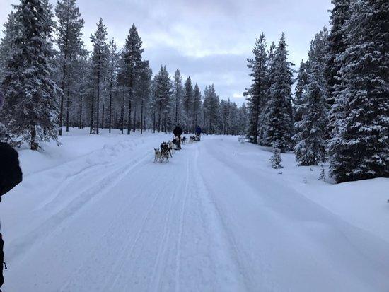 Luosto, Finland: photo5.jpg