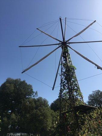 Malia, Grecia: Windmill relic