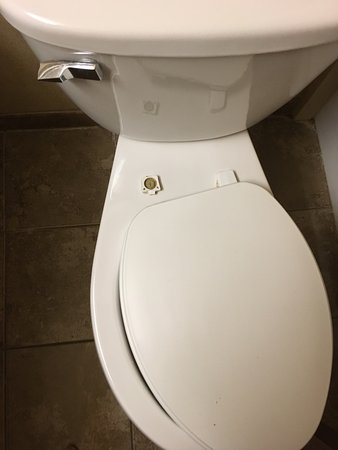 Coco Key Water Resort: I can't even understand how housekeeping didn't notice this broken toilet seat.