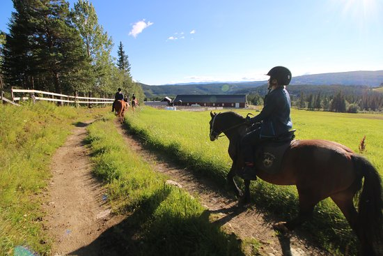 Skammestein, Norge: Heading down towards the stables