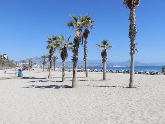 Playa de San Juan: Early September and perfect