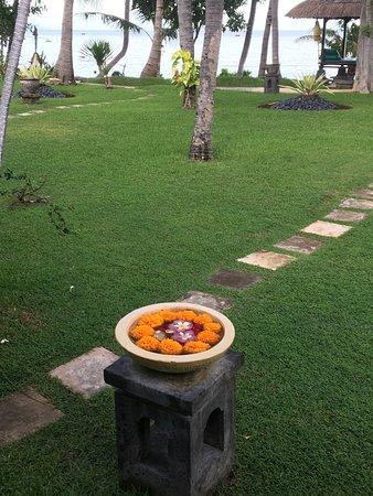 Pemaron, Indonezja: photo0.jpg