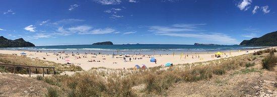 Pauanui Beach at Summer Period