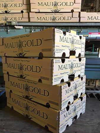 Makawao, HI: Boxed pineapples