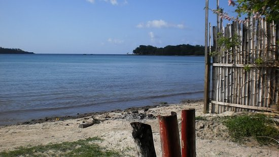 Survival Beach Restaurant: the view