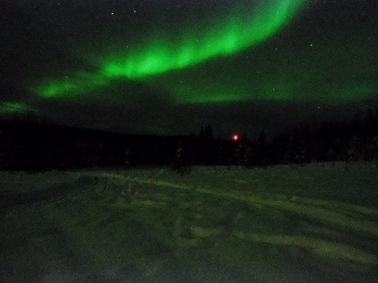 Alaska Northern Lights Tour : The best one on the night of Dec 25th. Camera is out of power and this picture was taken in a hu