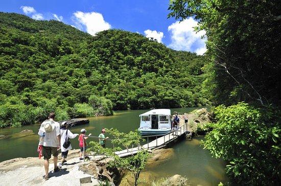 西表島ツアー:浦内川クルーズ、マリユドゥの滝ハイキング、カヤック ツアー