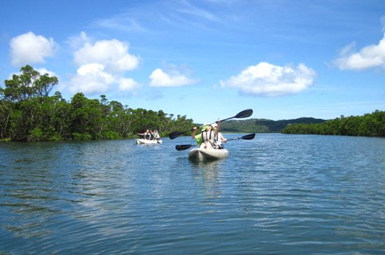 Iriomote Island Kayaking Full-Day Tour with Sangara Falls Hike