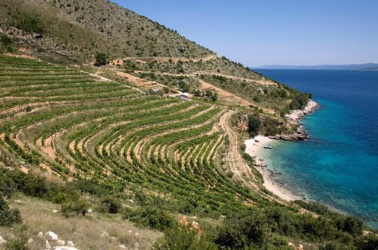 8-Day Dalmatia Home of Zinfandel...